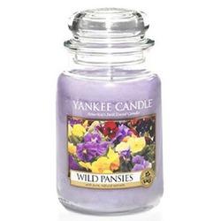 Divoké macešky Yankee Candle WILD PANSIES