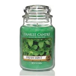 Čerstvá máta Yankee Candle FRESH MINT