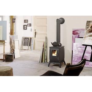 Teplovzdušná krbová kamna Iron Dog 01 - kvalitní litinová kamna zajistí teplo domova s mědvědí silou